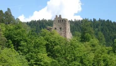 Bild Blick auf Schenkenburg
