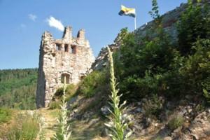 Bild von Schenkenburg mit Fahne