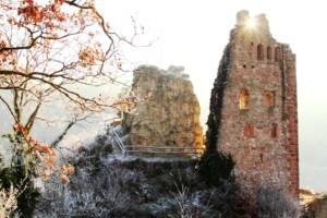 Bild von Schenkenburg im Winter