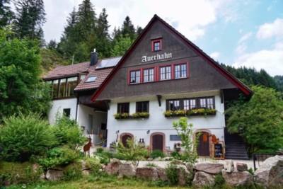 Bild von Gasthaus Auerhahn