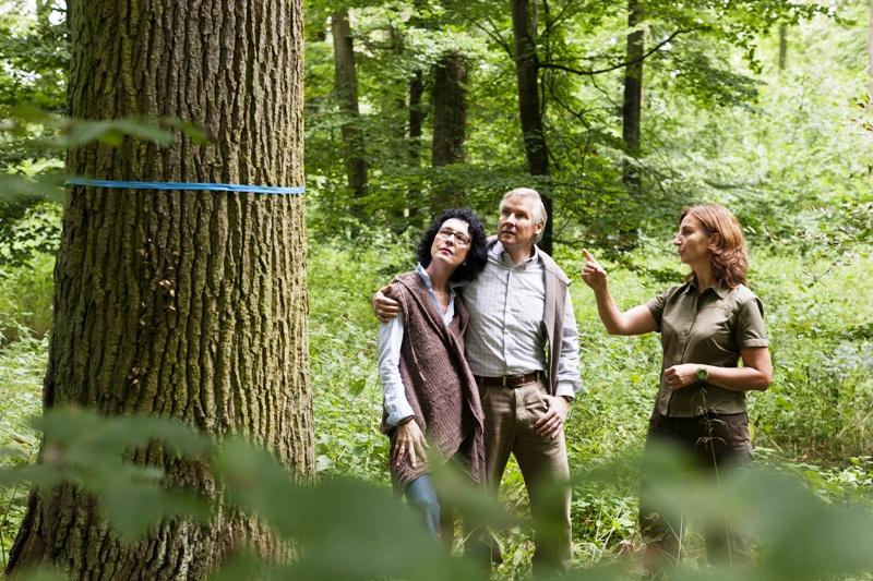 Bild von Waldführungen im Friedwald
