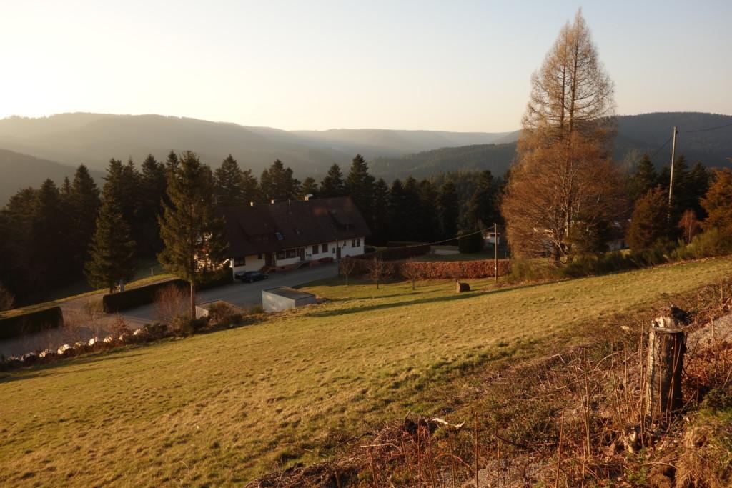 Bild Blick von Gasthaus Holzebene ins Tal