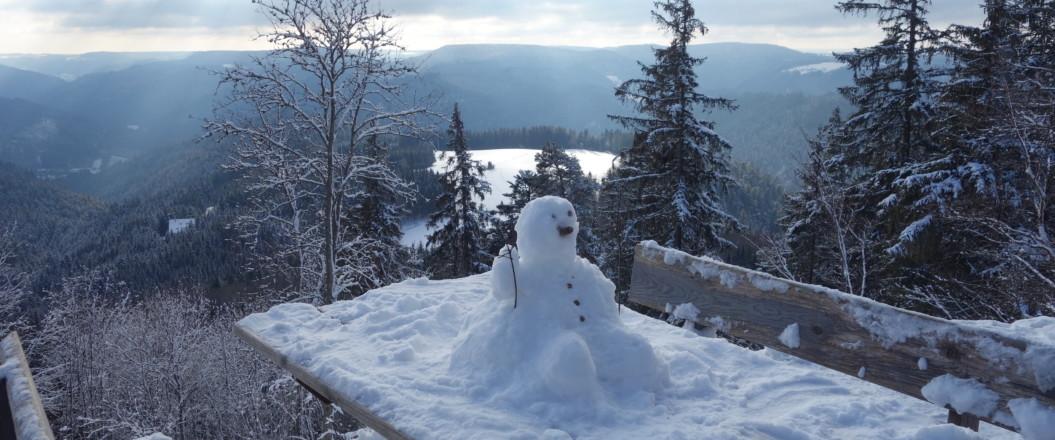 Bild vom Tisch Teisenkopf mit Schneemann