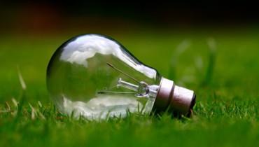 Bild von Glühbirne im Gras